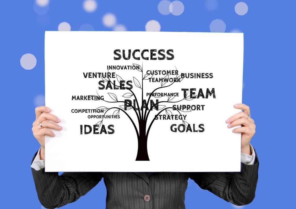 Arbol genialógico con los pasos del plan de marketing